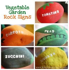 Vegetable Garden Rock Signs | The Micro Gardener plus 20 other great plant label ides.