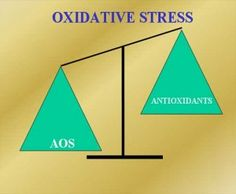 What is Oxidative Stress? Find out here:  http://www.managingstress4u.com/what-is-oxidative-stress/