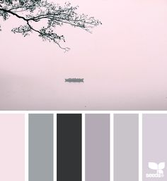 Misty Lake Color Palette