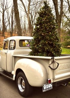 Oh, what fun it is to ride with a Christmas tree in the truck bed!