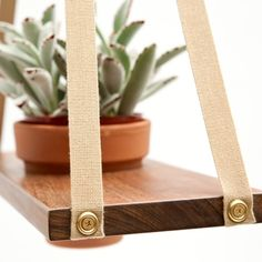 A-frame plant hangers handcrafted in California by designer, Danny Simon.