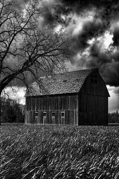 """""""Stormy"""" #photography #prints #art #black and white #decor (one of my favorite times to be outside on the farm is when the wind pics up)"""