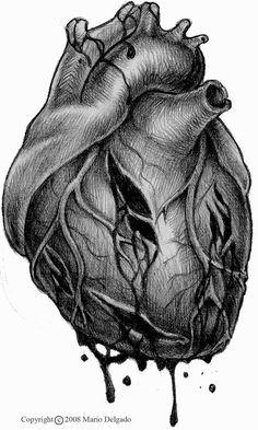 Human heart tattoo outline