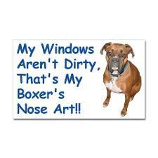 Boxer Nose Art