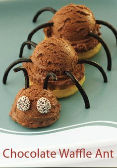 Chocolate Waffle Ant-- All your little critters will love eating this fun dessert!  Plus, this can double as a fun Halloween treat that you can make for the upcoming holiday.