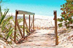 Pretty path to the beach