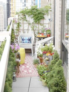 Apartment balcony garden inspiration, the carpet is a cute idea. I wonder if they have cute outdoor carpets