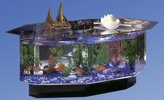 Octagon Aquarium Coffee Table