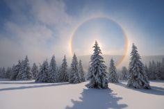winter dream, willows, rainbow ring, mother natur, rainbows, winter wonderland, christmas, winter sun