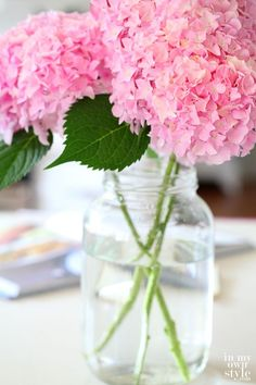 How to Cut Hydrangeas So They Won't Wilt - In My Own Style