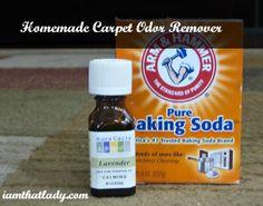 HomeMade Carpet Odor Remover