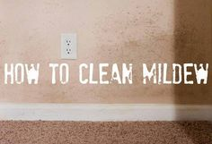 We can help you win the battle against mildew.