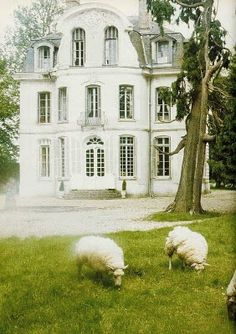 old homes, french homes, front yards, sheep, france, dream houses, english countryside, normandy, country homes