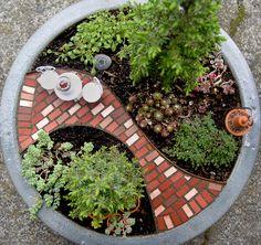 Miniature garden - Horticult -
