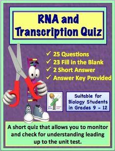 RNA (Ribonucleic Acid) and Transcription Quiz or Review