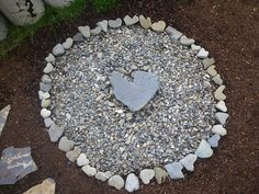 Love all the heart shaped rocks