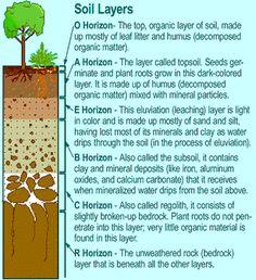 Garden delights soil aka terra firma on pinterest food for Garden soil layers