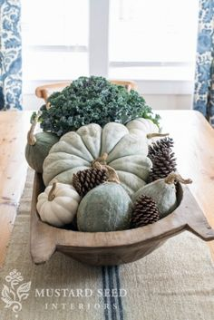 Fresh kale, blue Cinderella's pumpkin, blue hubbard squash, mini white pumpkins, and pine cones in a dough bowl.