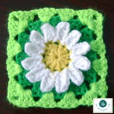 crochet wild daisy granny square