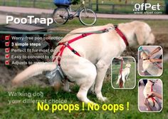Does the dog need any more indignity other than the leash, man up and scoop your dogs poop lazy ass! ...Epic Fail!
