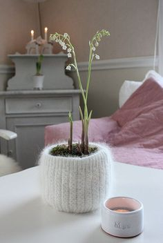 Knitted planter cozy