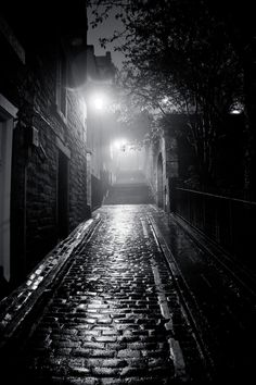 The Edinburgh Alley