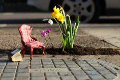 AKA pothole gardening