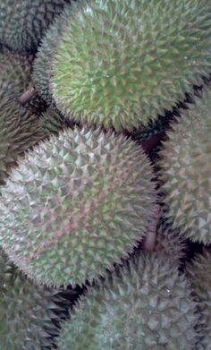 Durian. Uniquely South East Asian fruit