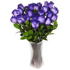 The Ultimate Rose Ultimate Rose Two Dozen Purple & White Fresh Cut ...