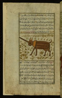 Turkish version of the Wonders of creation, An animal with one horn (name illegible), Walters Manuscript W.659, fol. 106a by Walters Art Museum Illuminated Manuscripts, via Flickr