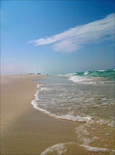 Sea Level, Shell Island, Florida, I have been to Shell Island and it is a very peaceful place to visit.