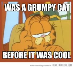 The original Grumpy Cat…love Garfield