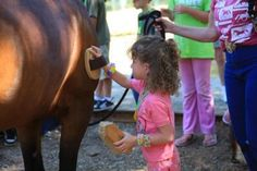Horse Summer Camp Craft and Game Ideas