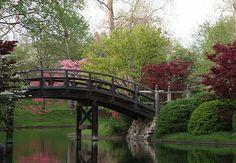 Missouri Botanical Garden - Japanese strolling garden