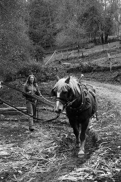 women farmers blog!