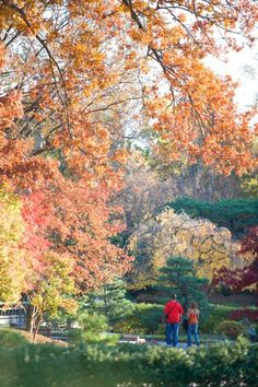 St. Louis: Missouri Botanical Garden in the fall