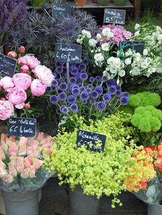 outdoor flowers, st louis paris france, paper flowers, flower market paris, flower shop