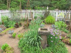 David Culp's PA Garden IMG_3720