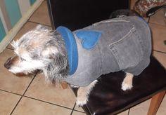 Denim Doggie Coat - you know, to go with the Denim Rag Quilt Handbag and Denim Rag Quilt Pencil Skirt
