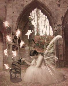 Setting the fairies free.