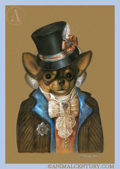 Chihuahua the Baby, Dandy Dogs of Animal Century