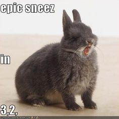 Epic sneeze.
