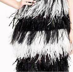 feathers xo