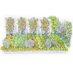 A Formal Salad Garden