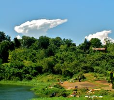 Wakisi, Uganda on the Nile River