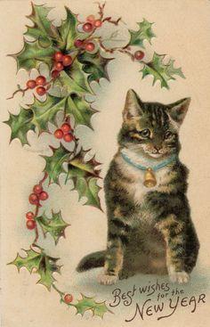 antique New Year postcard cat