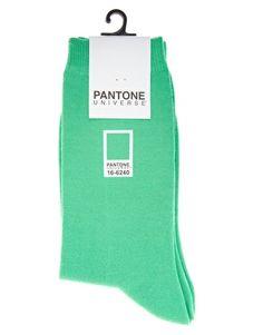 Pantone Brights Ankle Socks