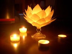 Paper flower and tea lights