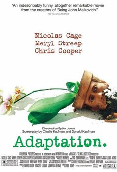 Adaptation - Smart, hilarious, and a brilliant look into a writer's block and struggle to succeed. (9/10)
