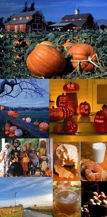 love the pumpkin farms, the fields of dried cornstalks, the country drives, the illuminated pumkins outside peoples homes, homemade donuts, fresh cider from the apple farm and the fun costumes!